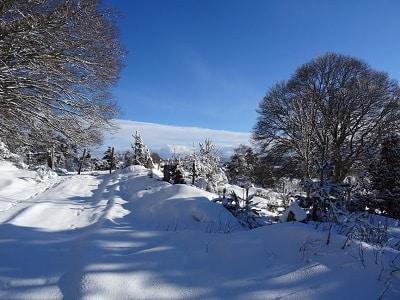 ballade dans la neige Lajo au gîte les bouleaux nains